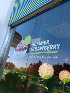 Pinkberry FroYo Franchise