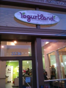 Self Serve Frozen Yogurt Franchise